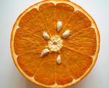 PETER ANTON Pop Orange Slice Wall Sculpture Signed Below Retail Dealer JKLFA.com - $9,405.00