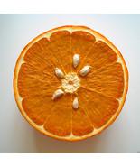 Peter Anton Pop Art Orange Slice Unique Wall Sculpture Signed Dealer JKL... - $9,405.00
