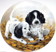 English Setters Collector Plate 1989 Fine Feathered Friends Kennel Club COA - $59.95
