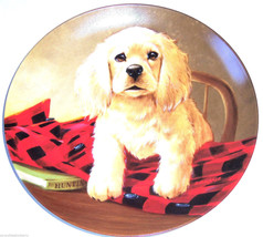 Cocker Spaniel Collector Plate 1988 Shirt Tails United Kennel Club COA  - $59.95