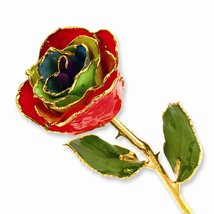 Lacquer Dipped Gold Trim Gypsy Rainbow Rose - $104.51 CAD