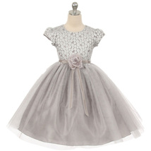 Silver Double Layered Mesh Flower Girl Birthday Pageant Formal Wedding Dress - $48.00