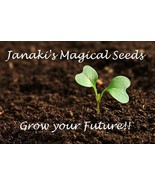 Plant the seed thumbtall