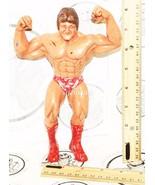 MR WONDERFUL PAUL ORNDORFF LJN WWF WRESTLING SUPERSTARS VINTAGE TOY FIGU... - $10.94