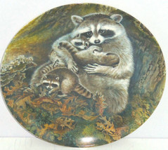 Racoon Baby Collector Plate Protective Embrace Wildlife Hicks Knowles Vi... - $59.95