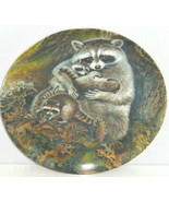 Racoon Baby Collector Plate Protective Embrace Wildlife Hicks Knowles Vintage  - $59.95