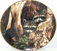 Racoon Plate Curious Pair Hamilton Collection Collector Ron Parker 1988 ... - $59.95