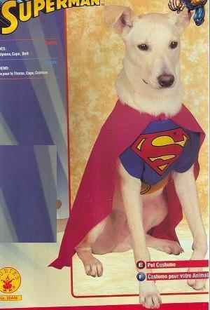 SUPERMAN Size SMALL PET COSTUME