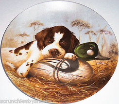 Springer Spaniel Collector Plate 1987 Dog Tired United Kennel Club COA  - $59.95