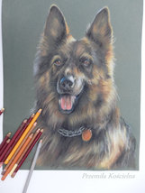 Custom dog portrait, Pastel drawing on request, Pet portrait from photos... - $84.00