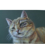 Custom Cat Portrait. Pastel drawing, Portrait from photos, Portrait on r... - $168.00