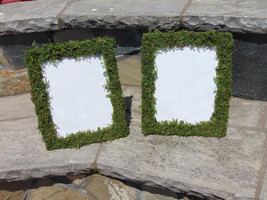 """Moss Picture Frames 4- 8""""x10"""" Moss Covered  (final size with moss 11X12.5)  - $58.23"""