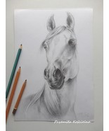 Custom horse portrait, Horse head, Graphite pencil drawing on request, E... - $99.00