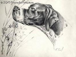 Custom Dog Pencil Drawing, Pet potrait form photos, Graphite pencil draw... - $99.00