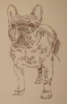 FRENCH BULLDOG DOG ART PORTRAIT #47 Kline draws... - $49.45