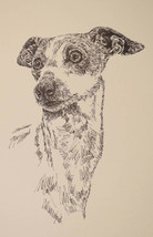 ITALIAN GREYHOUND DOG ART GIFT LITHOGRAPH #56 Stephen Kline draws dogs n... - $49.45