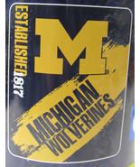 NCAA NIB 50x60 ROLLED FLEECE BLANKET PAINTED DESIGN - MICHIGAN WOLVERINES - $24.95