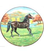 The Morgan Horse Collector Plate Purebred Horse... - $49.95