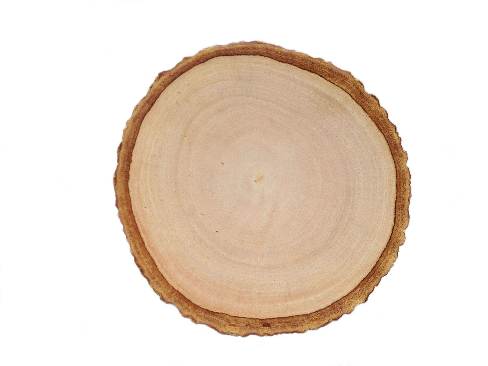 Rustic wood coasters wood slice coasters tree bark slice for Wood trunk slices