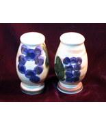 Oneida Veneto Grape Salt and Pepper Shakers - $39.99