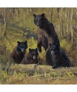 Twin Mountain Triplets by Karen Bonnie Black Be... - $226.71
