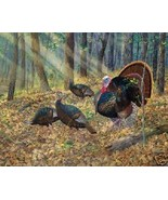 King Of The Hill by Randy McGovern  Canvas Gicl... - $118.80
