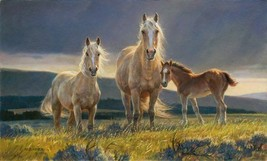 Golden Glory by Nancy Glazier S/N LE Lithograph Horses Golden Paliminos ... - $193.05