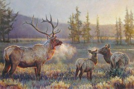 Morning by Nancy Glazier S/N LE Lithograph Wildlife Bull Elk Doe Animal ... - $193.05