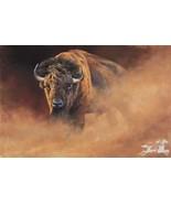 Causing A Stir by Edward Aldrich Bison Buffalo Wildlife Print Signed LE - $193.05