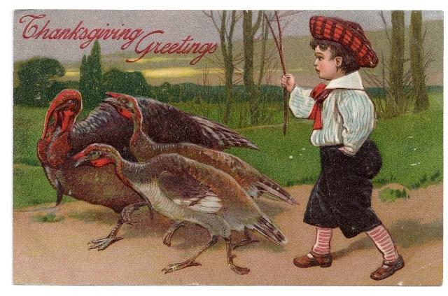 223br thanks boy herding turkeys w stick pfb