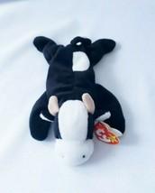 "Ty Beanie Baby ~ DAISY the Black & White Cow ~Plush~8""~PVC Pellets~1993~Retired - $9.89"