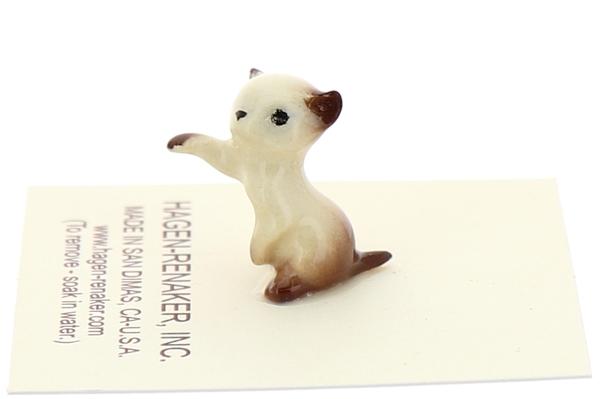Tiny kitten box02