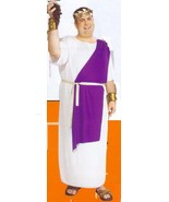 CAESAR COSTUME PLUS SIZE - $40.00