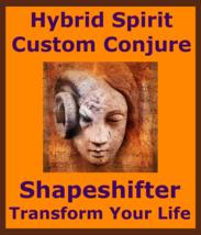 Hybrid Spirit Custom Conjure Tailor Made Spirit 4U + Money Love Protection Spell - $135.00