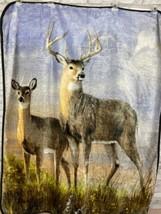 Northwest Deer Buck Doe Velour Blanket Throw Hunting Cabin Farm Wildlife... - $23.21