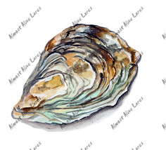 Oyster Shell Sticker Decal Home Office Dorm Wal... - $5.99 - $8.99