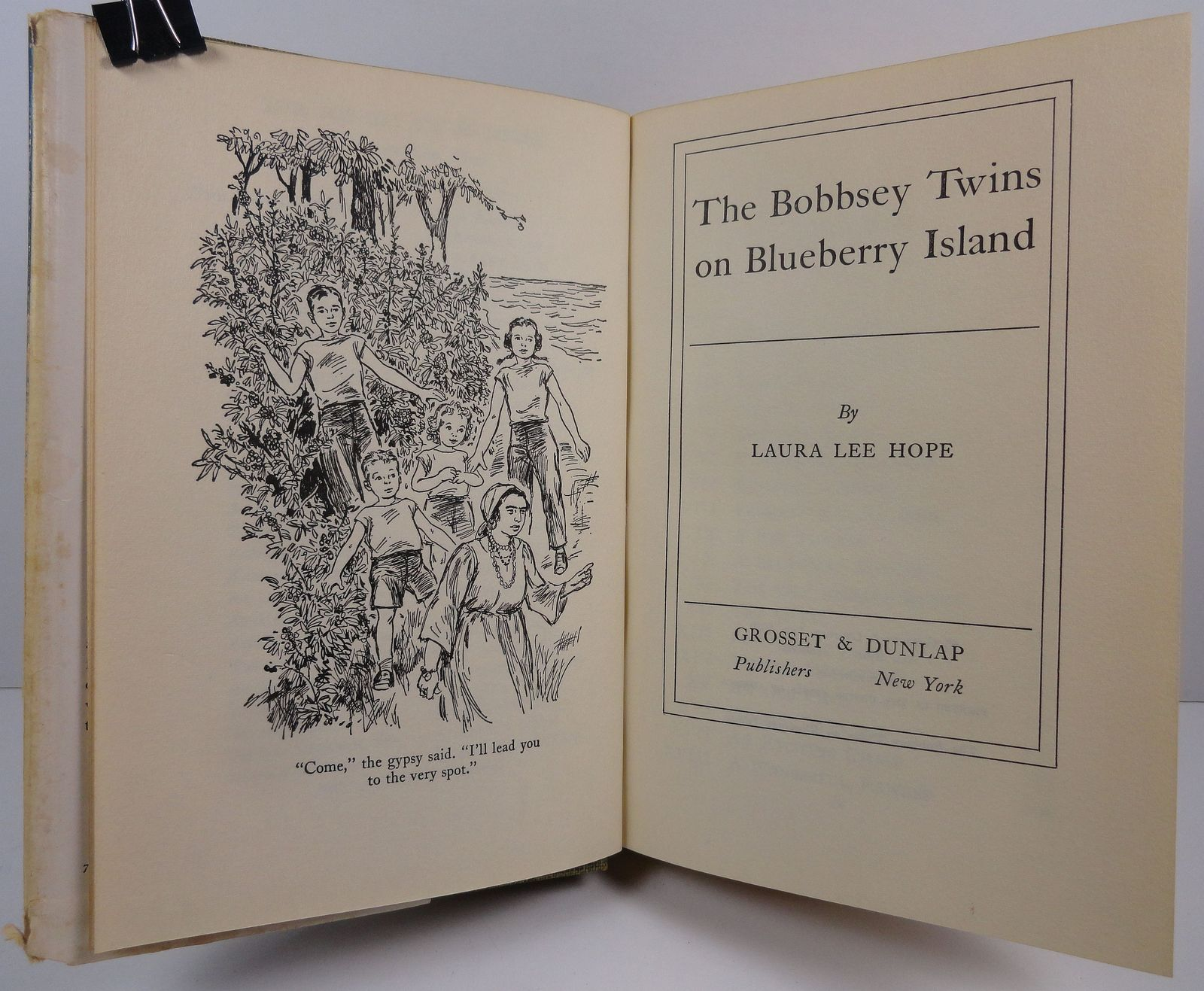 The Bobbsey Twins on Blueberry Island Laura Lee Hope HC/DJ