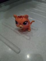 Littlest Pet Shop Mommy  Tiger Bobble ,Pink Eyes  - $9.49