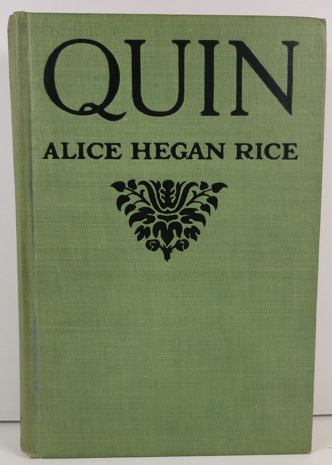 Quin by Alice Hegan Rice 1921 The Century Company