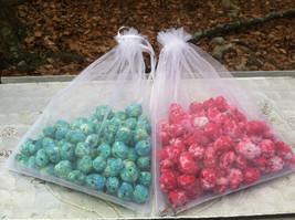 100 Seed Bombs Native Wildflowers *Grow Flowers Anywhere!* - $40.00