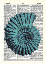 Art N Wordz Turquoise Conch Original Dictionary... - $21.00