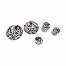 Moroccan 5 Piece Serving Set Glazed Terracotta Zebra Striped Silver Meta... - $75.74