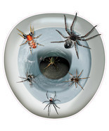Novelty Toilet Seat Spider Cover Sticker Creepy Topper Removable Hallowe... - £10.48 GBP