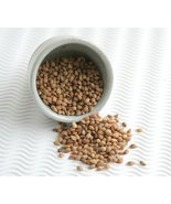 Whole Mahlepi Seeds Mahleb Mahlab Mahlep Traditional Spice for Pastry Ma... - $18.32