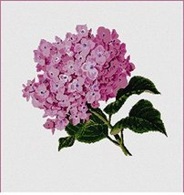 Hydrangea Pair Needlepoint Kit - $100.73