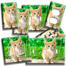 Cute Green Eyes Kitten Kitty Cat Light Switch Outlet Wall Plate Cover Bedroom - $9.99+