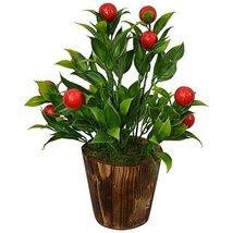 Fancy Mart Artificial Plant Bonsai Red Fruit Bunch, 24 cm/9.5 inch in Wo... - $49.98