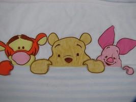 Disney BABY Winnie the Pooh Peek A Boo Green Bl... - $11.60
