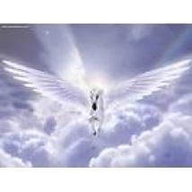 Angels & Unicorns Reiki Attunement/healing eart... - $1.75