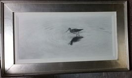 "Cole Johnson ""YELLOWLEGS WADING"" ORIGINAL Graphite Drawing (Yellow Legs)... - $479.99"
